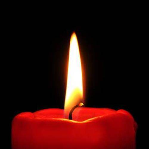 Brittany Ann Nelson's obituary , Passed away on April 6, 2021 in Tampa, Florida